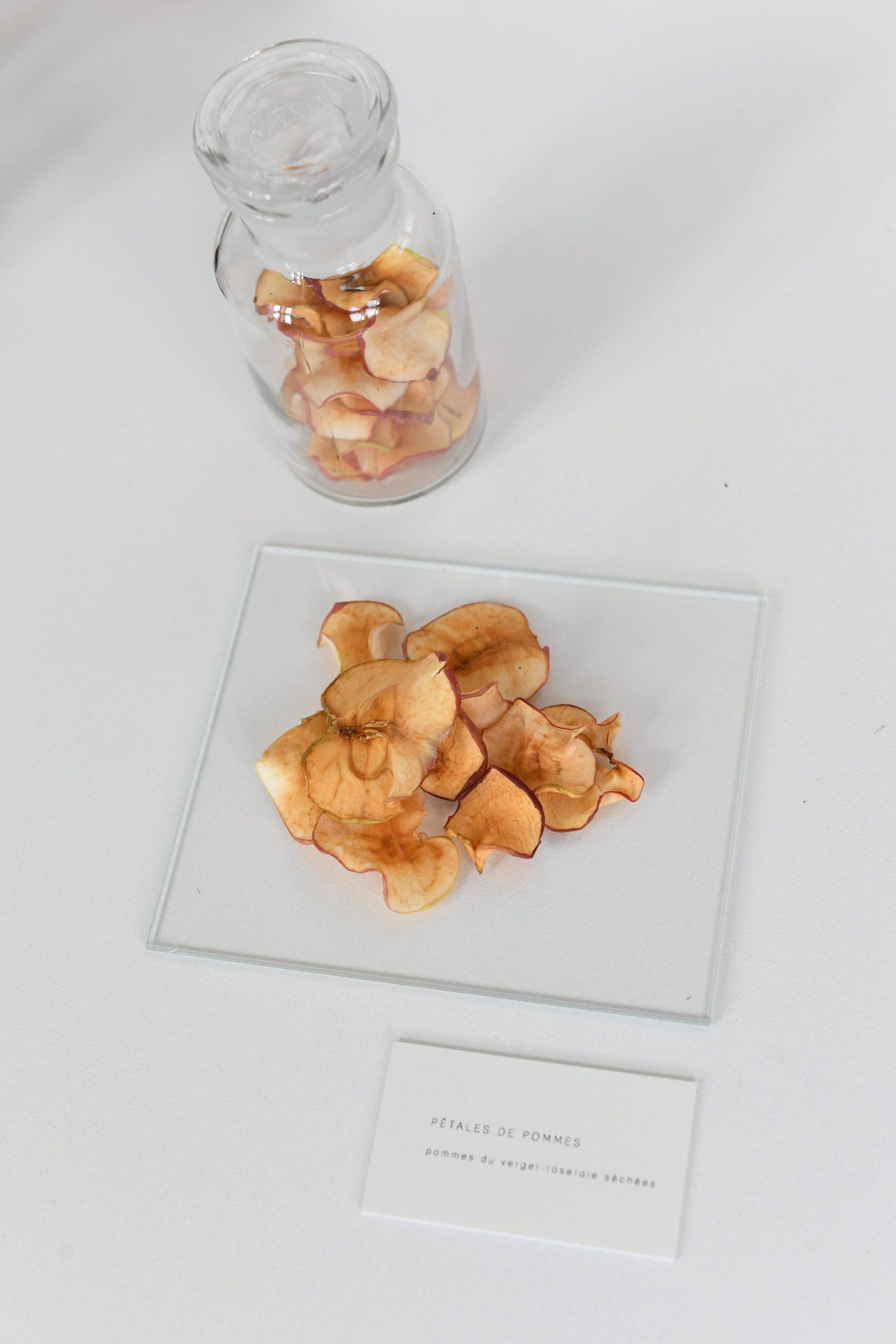 Evocations sensorielles - Pétales de pommes du verger-roseraie d'Albert Kahn