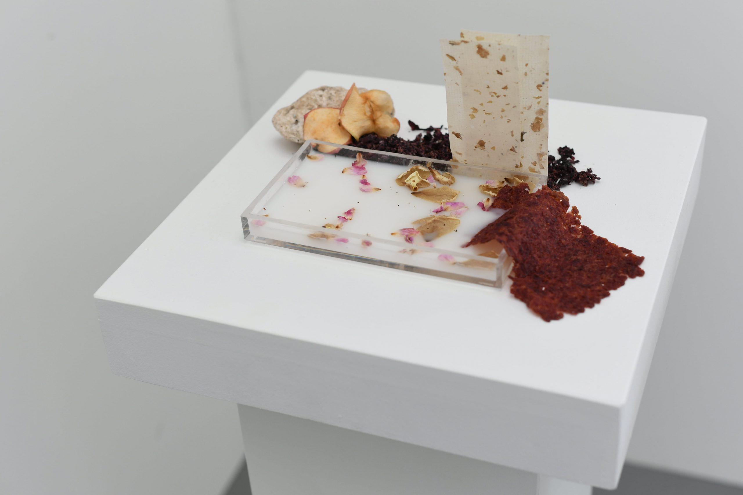 Maquette sensible - Microcosme du verger-roseraie